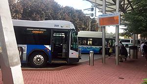 Buses & Shuttles | HARTransit